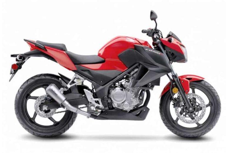 Honda-CB-300F-a-good-beginner-bike-micramoto (5)